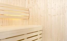 sauna Classic-03